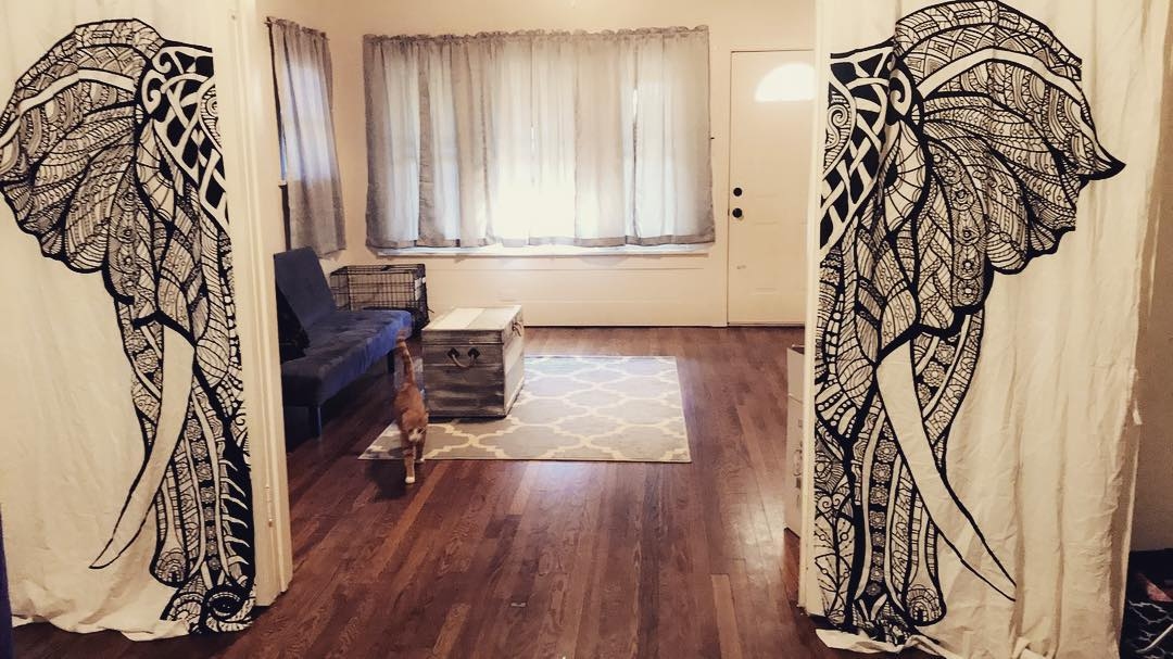 These tapestry curtains are life. #royalfurnish #tapestry #tapestrycurtains #yogaroom #yogabody #elephant
