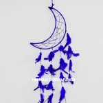 Purple Moon Shaped Dream Catcher