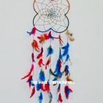 Colorful Spider Web Dream Catcher