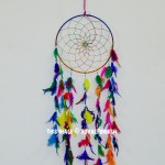 Multi Boho Colorful Dream Catcher